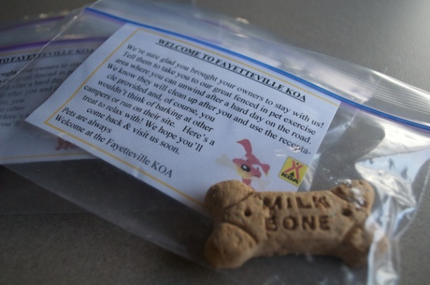 Dog Treats for All!