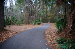 The very narrow and winding campground road