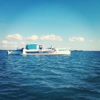 Crazy Catamaran